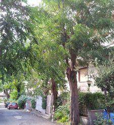 Vendesi appartamento – Cassia / San Pietro 60 mq