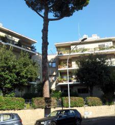 Affittasi Appartamento Balduina Massimi – 160 mq